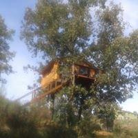 Cabañas en los Árboles de Extremadura www.dormirenlosarboles.es
