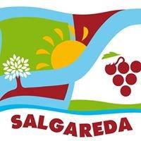 Salgareda's City