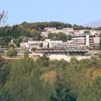 Centre International De Valbonne
