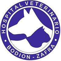 Clinica Veterinaria Bodion - Zafra