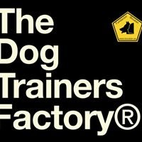 The Dog Trainers Factory