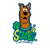 Clínica Veterinaria Scooby-Illescas