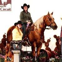 Crazy L Ranch Horse Breeding