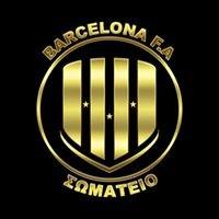 Barcelona Football Academy