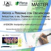 Máster UAM - Plena Inclusión: Apoyos a personas con DIyDD y a sus familias.