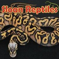 Sloan Reptiles