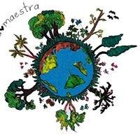 Natura Maestra - Piante Innovative