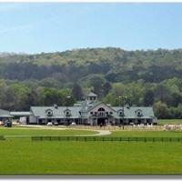 Three Bears Farm