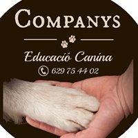 Companys Educació Canina