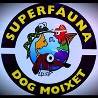 Clínica Veterinaria Dog Moixet-Superfauna