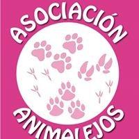 Asociación Protectora Animalejos