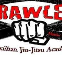 Brawler brazilian jiu-jitsu academy