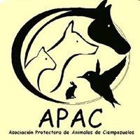 APAC Ciempozuelos
