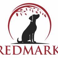 Redmark Labrador Retrievers