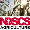 North Dakota State College of Science - Agriculture