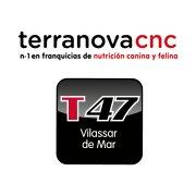 Terranova 47