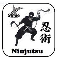 Ninjutsu Coesfeld ( Bujinkan Budo )