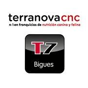 Terranovacnc7
