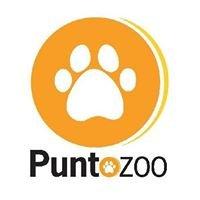 Punto Zoo