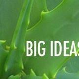 UC Irvine Big Ideas