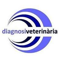 Resonancia Veterinaria Diagnosi