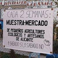 Muestra-mercado de pequeños agricultores ecológicos y artesanos de Alicante