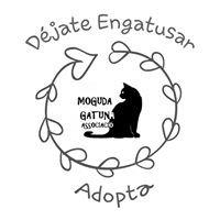 Moguda Gatuna Associació