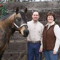 Rick Schroeder Quarter Horses