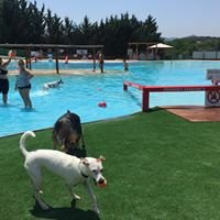 Aquapark Canino Can Jané