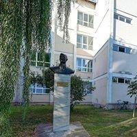 """Colegiul Tehnic """"Traian Vuia"""" Oradea"""