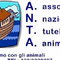 A.N.T.A. onlus Sezione di Terralba