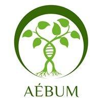 Association étudiante de biologie de l'Université de Montréal - AÉBUM