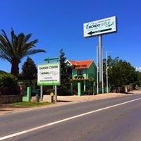 Mondo Verde garden center
