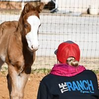 The Ranch Equine, Inc.