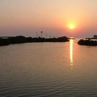 Aripeka Sunsets