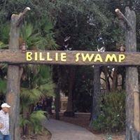 Billie Swamp Safari - Florida Everglades