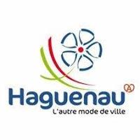 Groupement Des Hoteliers Restaurateurs Haguenau