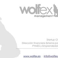 Wolfex, CFO & Corporate Finance
