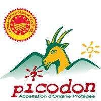 Syndicat du Picodon AOP