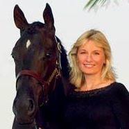 Misko Quarter Horses LLC