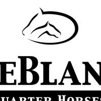 LeBlanc Quarter Horses