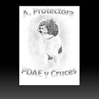 A. protectora CRUCES Y PDAE en adopcion