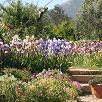 The Iris & Rose Garden Marnes
