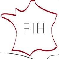 French Institute of Houston