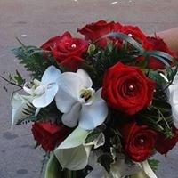 Les fleurs de marthe