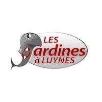 Tournoi des Sardines à Luynes Seven's