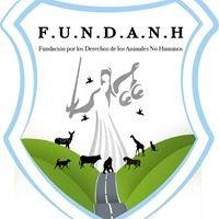 Fundación por los Derechos de los Animales No Humanos