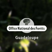 ONF Guadeloupe - Office National des Forêts