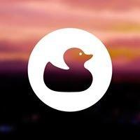 Duckplan