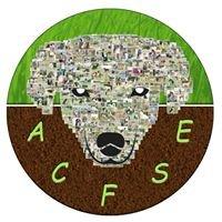Club canin ACFSE